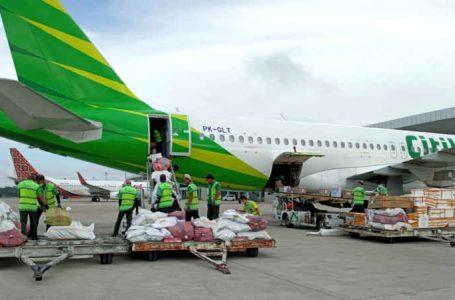Kargo Jadi Berkah Disaat Peniadaan Mudik, Citilink Layani 36 Penerbangan Kargo