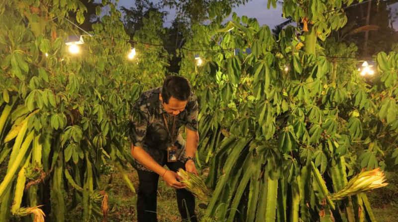PLN Ajak Petani Beralih ke Mesin Listrik, untuk Tingkatkan Produktivitas Sektor Pertanian