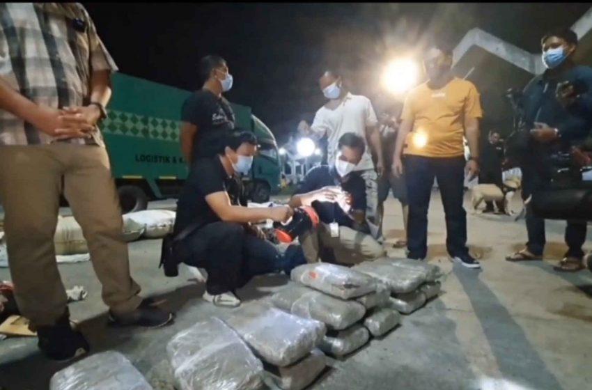 44 Kg Paket Ganja dalam Truk Ekspedisi dari Medan, Diamankan BNN Bali