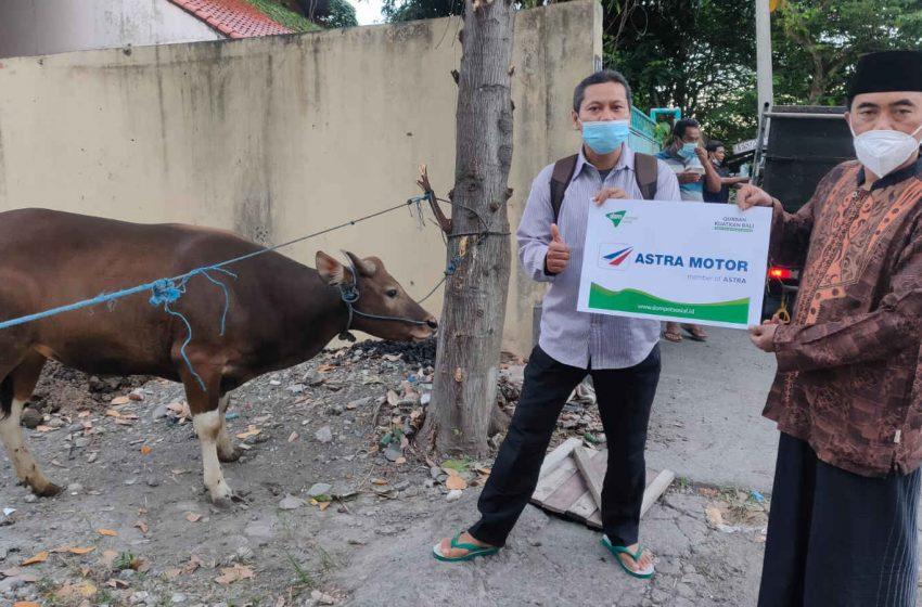 Wujud Berbagi, Astra Motor Bali Serahkan Hewan Kurban Kepada Masyarakat
