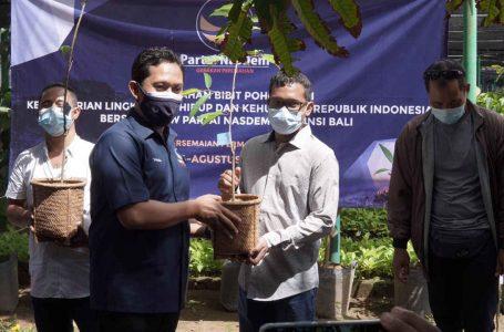 Dorong Millennial Bertani, NasDem Bali Serahkan 4.500 Bibit ke Tiga Kabupaten/Kota
